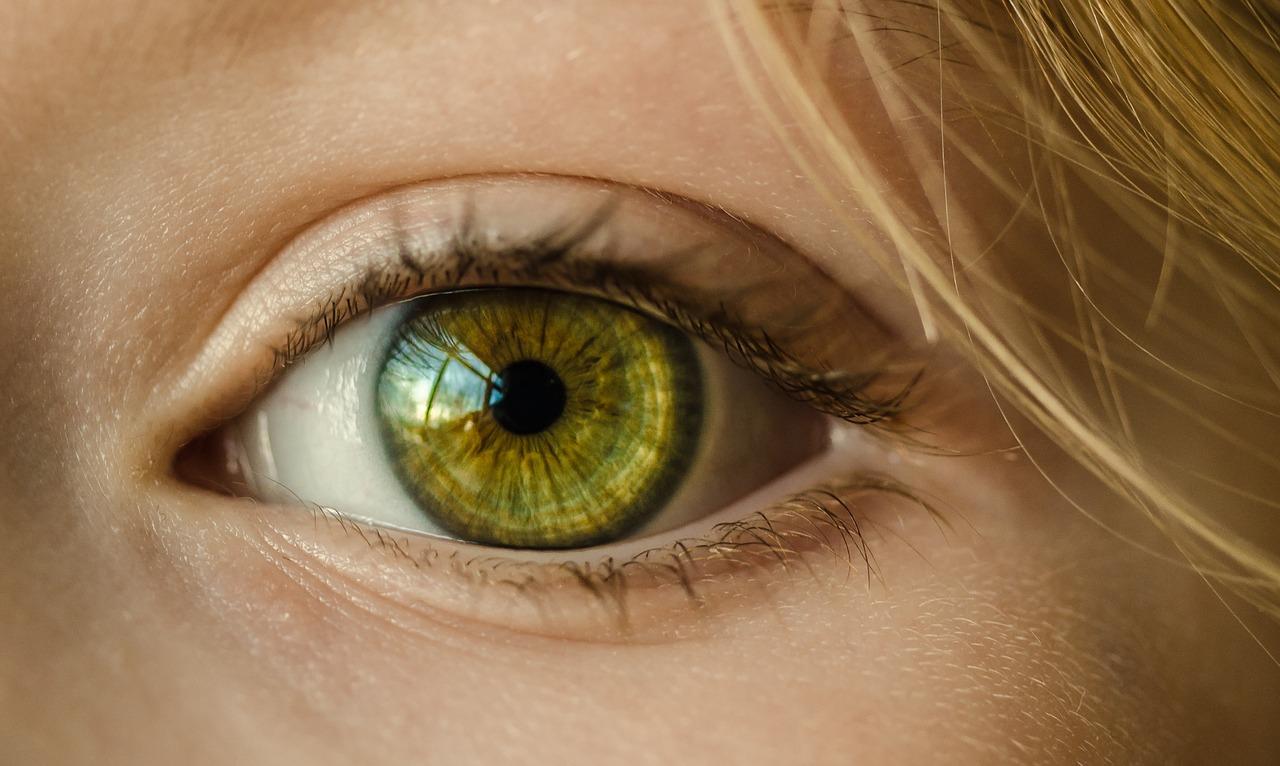 contorno occhi bio